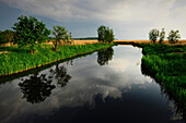 Arm of the sea between fields, Achterwasser, Usedom, Mecklenburg-Western Pomerania, Germany