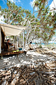Luxury tent on stilts right at the beach under Pandanus trees, Wilson Island Resort, Wilson Island, part of the Capricornia Cays National Park, Great Barrier Reef Marine Park, UNESCO World Heritage Site, Queensland, Australia