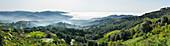 Küstenlandschaft bei Marina di Campo, Insel Elba, Toskana, Italien