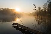 Pond in morning light, Alpine foothills, Upper Bavaria, Germany