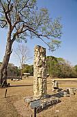 Stela 3 in the Great Plaza, Mayan ruins of Copan, Copan Ruinas, Honduras
