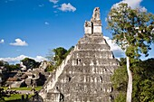 Central Acropolis, Great Plaza, Tikal, El Peten department, Guatemala