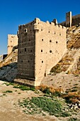 historic citadell of Aleppo, Unesco World Heritage Site, Syria, Middle East, West Asia