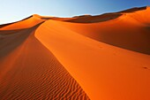 Morocco, Central Morocco, Merzouga The undulating shapes of the dunes of the Erg Chebbi, part of the Sahara desert