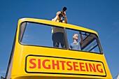Tourist Bus Sightseeing Bus