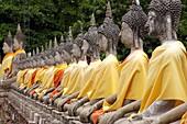 Row Of Buddha Statues, Wat Yai Chaya Mongkol, Ayuthaya, Thailand