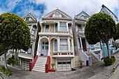PAINTED LADIES or POSTCARD ROW houses, Alamo Square, Steiner Street, San Francisco, California, USA