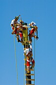 Voladores de Papantlaflying Men,  in an acient ritual from the state of Veracruz, Mexico Preformed at Las Golondrinas south of Santa Fe, New Mexico