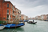 Gondola on Grand Canal, Venice, Veneto, Italy