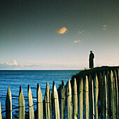Person standing next to sea, fence in foreground
