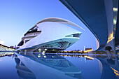 Palau de les Arts Reina Sofía, Architect Santiago Calatrava, Av Autopista del Saler, Pont de Pont de Montolivet, Valencia, Spain