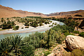 Africa, Maghreb, North africa,Morocco,  Ziz valley , north of Er Rachidia