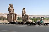 Egypt, Luxor, Memnon colossus
