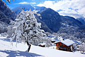 France, Rhone-Alpes, Alps, Haute Savoie, chalet in snowed landscape in Chamonix Valley