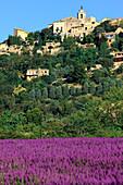 France, Provence, Vaucluse, Gordes, general view