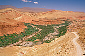 Morocco, Rose valley, general view