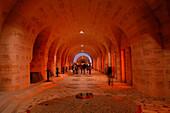 France, Lorraine, Meuse (55), Verdun, Douaumont ossuary, indoors
