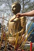 France, Paris, Buddhist ceremony at the Vincennes Buddhist Pagoda