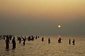 Inde, Bengale occidental, Ganga Sagar, Hindu pilgrims bathing at dawn at Ganga Sagar Mela yearly pilgrimage at the mouth of the Ganges