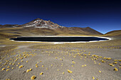 Chile, San Pedro de Atacama, Laguna Miniques
