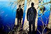 Two Human Shadows on Tree Trunks