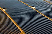 Aerial view of solarpark in the sunlight, Schweich, Eifel, Rhineland Palatinate, Germany, Europe