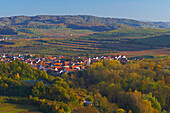 View over vineyards and forest at Sasbach, Kaiserstuhl, Baden Wuerttemberg, Germany, Europe