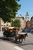 People enjoy a carriage ride sightseeing tour of the old town, Stockholm, Sweden