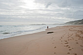 Jogger on the waterfront, Brenton on rocks, Garden Route, South Africa