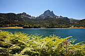 View over Lac de Bious-Artigues reservoir to Pic du Midi d'Ossau, Ossau Valley, French Pyrenees, Pyrenees-Atlantiques, Aquitaine, France