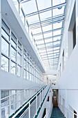 Museum für Angewandte Kunst Frankfurt, Frankfurt am Main, Hesse, Germany, Europe