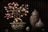 Blooming bonsai and Chinese porcellain, Shanghai, China, Asia