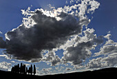 Cypresses under clouded sky, Crete, Tuscany, Italy, Europe