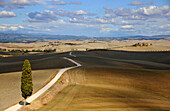 Country road in a hilly landscape, Crete, Tuscany, Italy, Europe