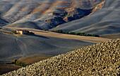Lonesome homestead, Crete, Tuscany, Italy, Europe