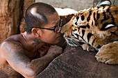 Friendly encounter of monk with tiger at Pha Luang Ta Bua (Temple of the Tigers), near Kanchanaburi, Thailand