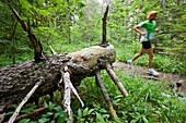 Jogger running through the forest, Oetscherland, Oetschergraeben, Lower Austria, Austria, Europe