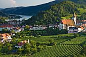View of vineyards and the town of Spitz an der Donau, Wachau, Lower Austria, Austria, Europe