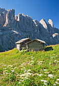Alpine huts in front of Dolomites, Sella, South Tyrol, Alto Adige, Italy, Europe