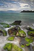 Rocks covered with algae, sea and coastal landscape near Ogliastro, Haute-Corse, Corsica, France