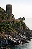 Geonese Tower, Marine de Meria, Cap Course, Corsica, France