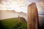 Fence posts in the evening mist, Kleine Scheidegg above Grindelwald, Bernese Oberland, Switzerland