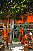 Buddhist monks, novice, in front of their dwelling, Luang Prabang, Laos