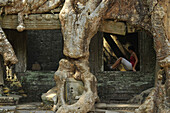 Mighty roots embracing the windows of a gallery in Preah Khan with a young woman in a window, Angkor, Cambodia, Asia