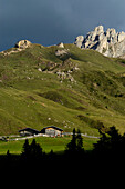 Alpine hut at a mountainside, Alpe di Siusi, Nature reserve Schlern Rosengarten, South Tyrol, Italy, Europe