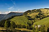 Rasciesa, Monte Piz, Seiser Alm, Schlern-Rosengarten Nature Park, Valle Isarco, South Tyrol, Trentino-Alto Adige, Italy