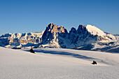Langkofel, Langkofel massif, Plattkofel, Plattkofel alpine pasture, Puflatsch, Alpe di Siusi, Valle Isarco, UNESCO world natural heritage, Dolomites, South Tyrol, Trentino-Alto Adige, Italy