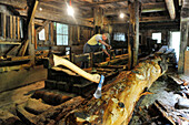 Tree trunk and worker in a sawmill, Welschnofen, South Tyrol, Alto Adige, Italy, Europe