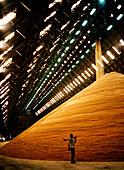 Grain storage, Barbados
