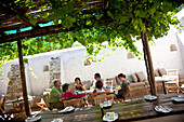 'Outdoor lunching, Scenes at Constantia Wineyard, Cape Town, South Africa'